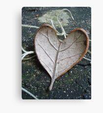 "The ""I Love You"" Leaf Canvas Print"