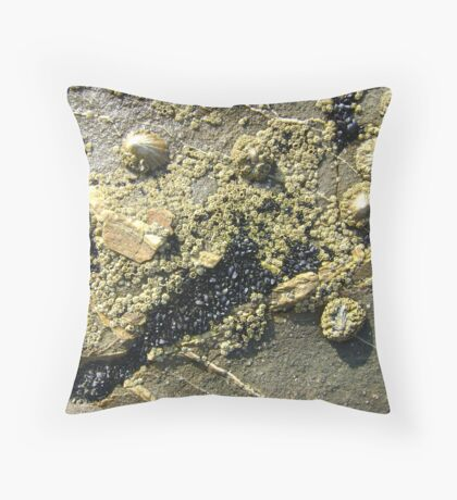 mussels, barnacles, limpets, oh my! (Seafield Beach) Throw Pillow