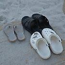 papa bear feet, mama bear feet and baby bear feet by Margaret Shark