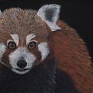 Pete: The Red Panda by NyreeMason