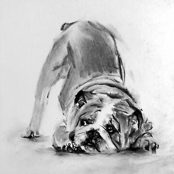 little bulldog by stoekenbroek
