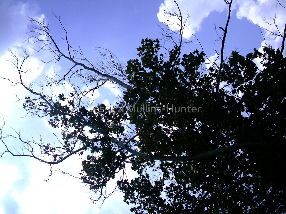 tree in the sky by Jessica Mullins-Hunter