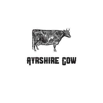 Ayrshire Cow | Animal Art by CarlosV