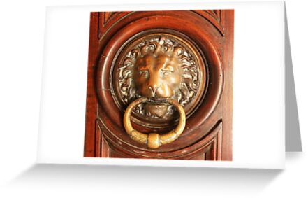 An Elegant Lion Door Knocker in Arles by Laurel Talabere