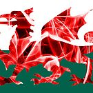 The Welsh Smoke Dragon by Steve Purnell