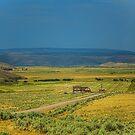 USA. Utah. Countryside. by vadim19