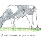 Ruminant cow by experimentons
