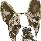 Boston Terrier Dog Head by MudgeStudios