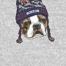 Boston Terrier Blue Sports Beanie by MudgeStudios