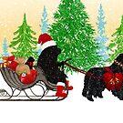 Newfoundland Dog Christmas Card by Christine Mullis