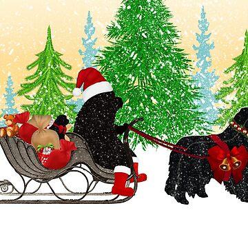 Newfoundland Dog Christmas Card by itsmechris