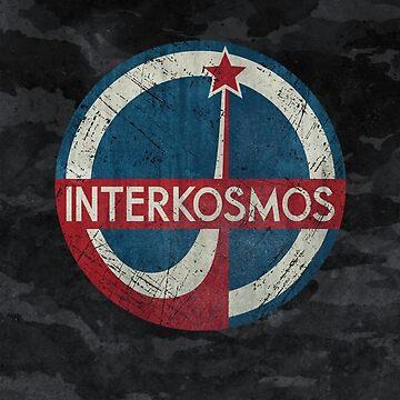CCCP Interkosmos Russia by Lidra