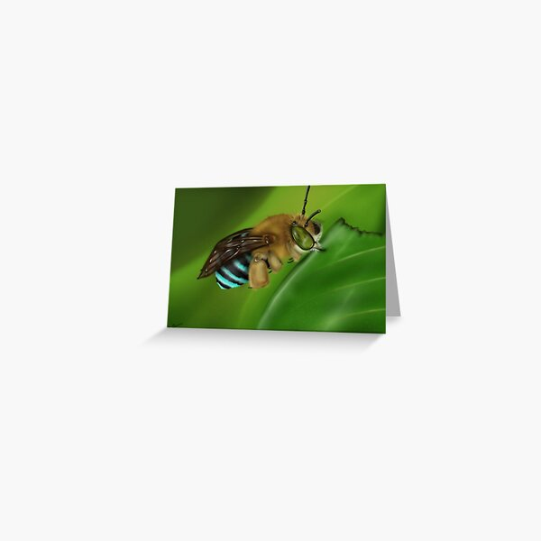 Blue-Banded Bee Greeting Card