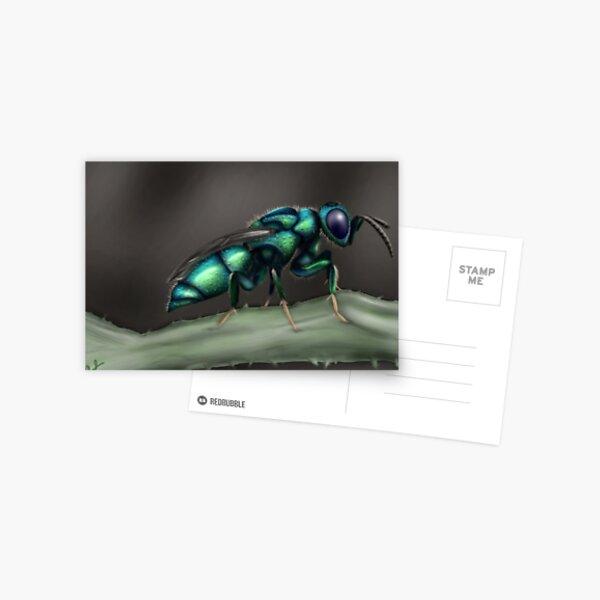 Cuckoo Wasp Postcard