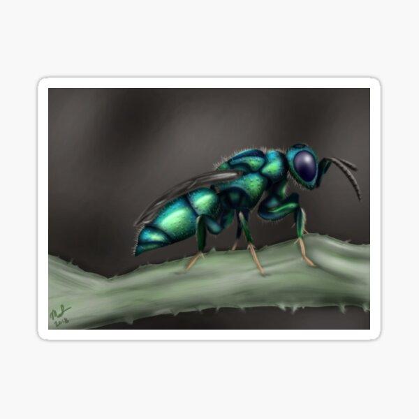 Cuckoo Wasp Sticker