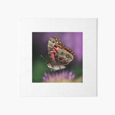 American Painted Lady Butterfly Art Board Print