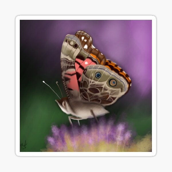American Painted Lady Butterfly Sticker