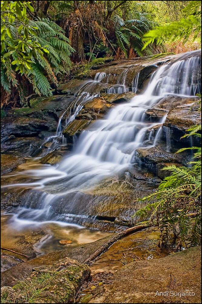 Leura Cascades by Andi Surjanto