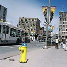 Ottawa City View by heyhodesign