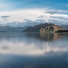 The Little Tree at Lake Wanaka by Mieke Boynton