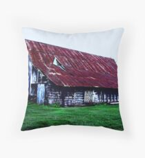 The Way I See It, or The Way It Was? Throw Pillow