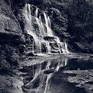 Katoomba Falls by Adriana Glackin