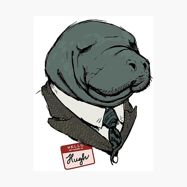 Hugh Manatee Photographic Print
