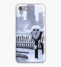 Face of the Falls iPhone Case/Skin
