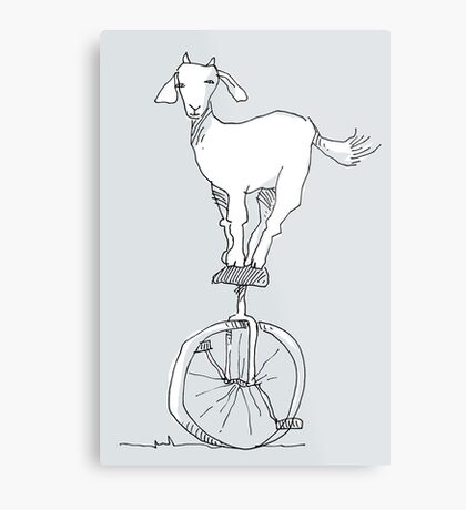 Goat on a unicycle Metal Print