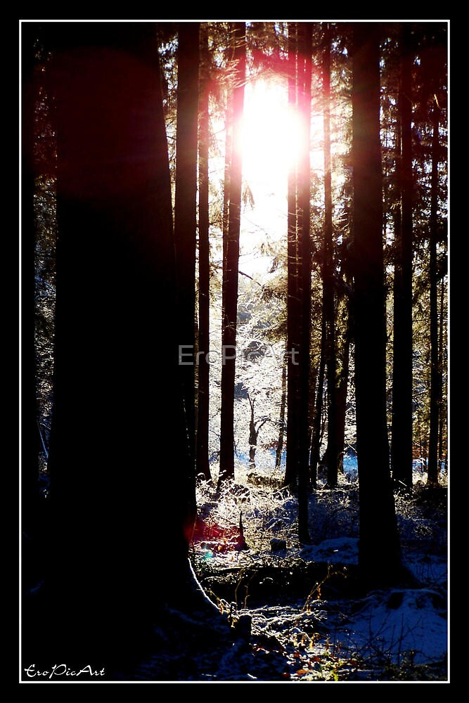 Winterland by EroPicArt