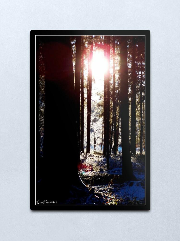 Alternate view of Winterland Metal Print