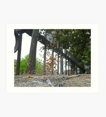 Spider's nest disturbed, Joppa Art Print