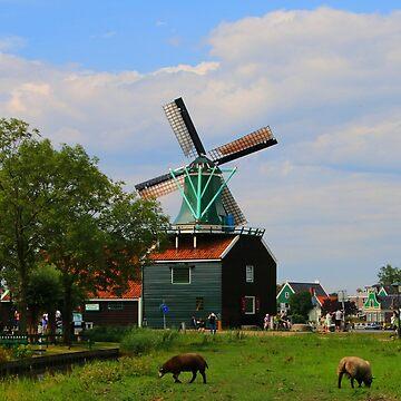 Dutch Windmill Village, Holland 5 by FranWest