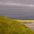 Beachfront Aran Islands by Louise Fahy