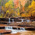 Autumn Falls by Valentina Gatewood