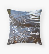 Hole in the Water Throw Pillow