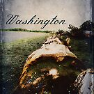 Washington Seashore by EvePenman