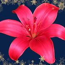 Decorative Garden Red Lily by hurmerinta