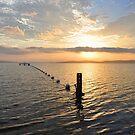 Sunset Over Belmont Bay - Lake Macquarie NSW by Bev Woodman