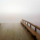 Fog Rolling In by Barry W  King