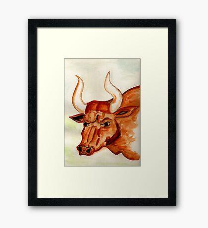 The Bull Horns Framed Print