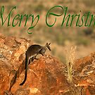 Christmas Card by Stuart Cooney
