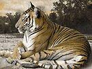 Tiger Scene by Veronica Schultz