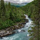 Alaska River Canyon - II by AlsknMommaBear2