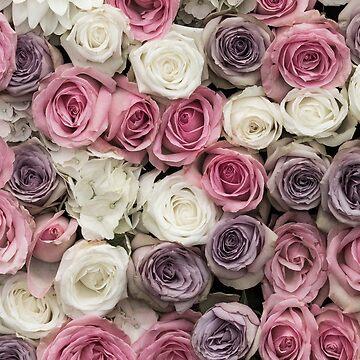 Vintage rose by chris2766