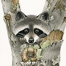 Peek-A-Boo Raccoon by Tracy Lizotte