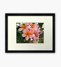 Frang time, aorbflowers,  Framed Print
