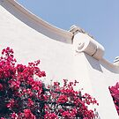 California Pink Flower Wall  by AlexandraStr