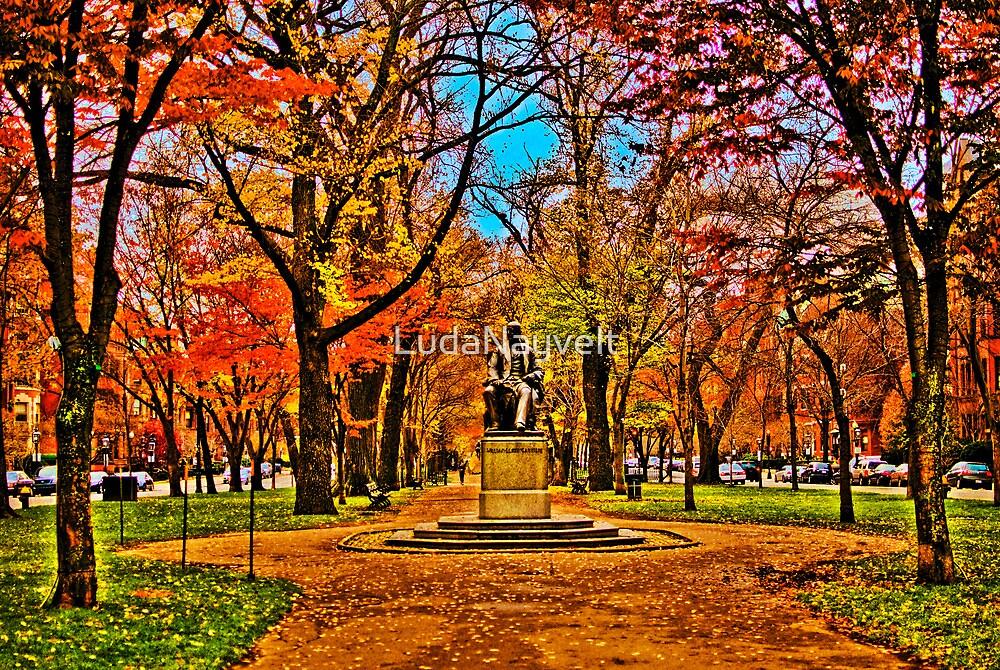 Commonwealth Ave, Boston by LudaNayvelt