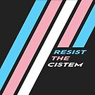 Pride Stripe: Resist The Cistem by Kavaeric